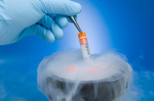 Сперма в криобанке