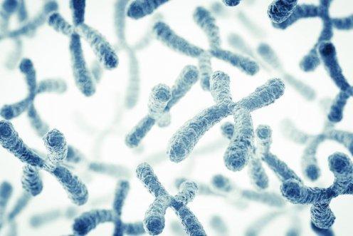 Последствия хромосомных аномалий