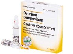 Овариум композитум: схема лечения для зачатия